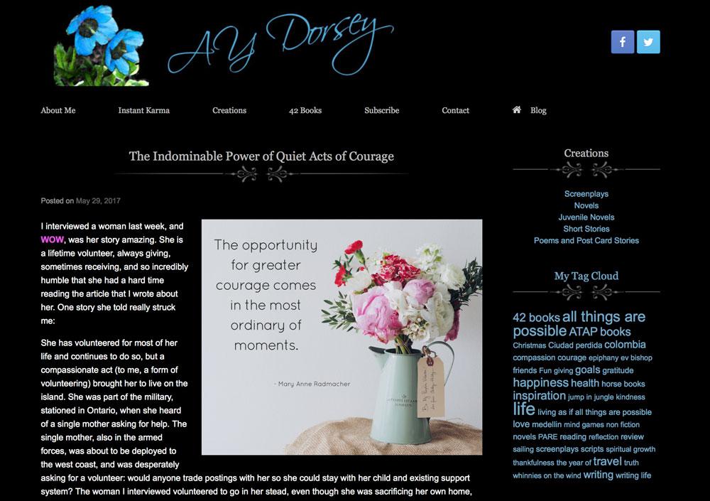 aydorsey.com